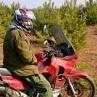 Шлем Skully Helmets - последнее сообщение от bahusdivus